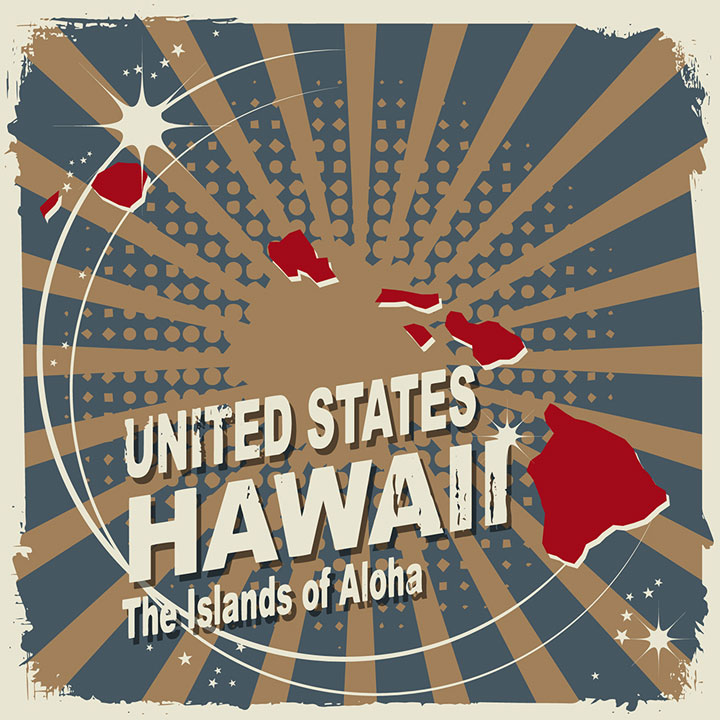 abstract hawaii map